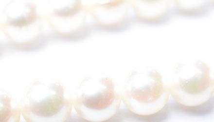 パールの種類アコヤ真珠画像1